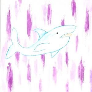 sharkpurple